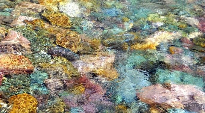 Piedras de fantásticos colores, bajo las aguas del río San Isidro