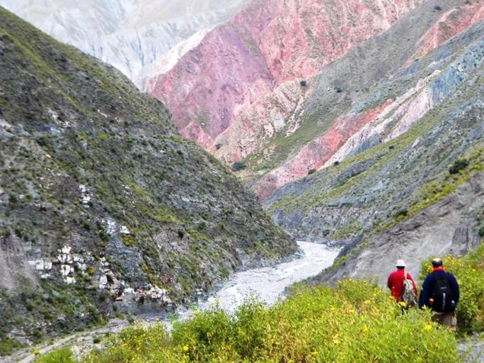 Volviendo de San Isidro a Iruya. Sunchos en flor, las montañas lavadas por el agua. A principio de abril todavía puede caer alguna lluvia en Iruya