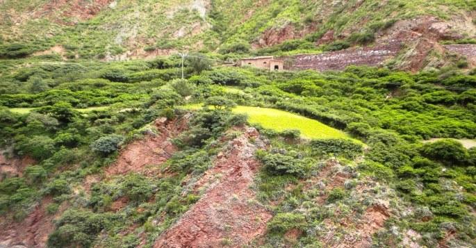 Una vista bien de verano, camino a San Isidro (Iruya). En verde claro, sembrado