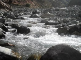 Las cristalinas aguas del río San Isidro. Se juntarán con el río Iruya, y más abajo con el Bermejo. (Foto: Pablo Harvey)