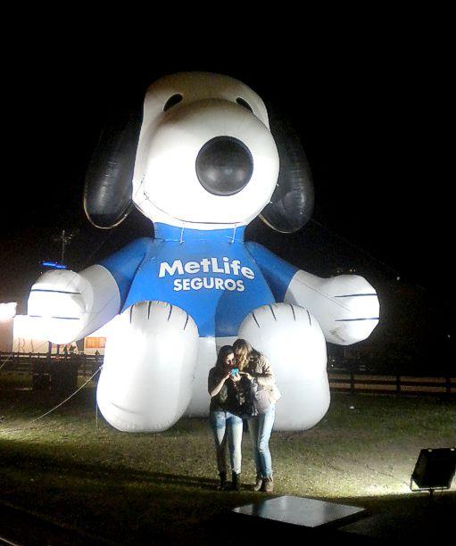 Una mascota gigante